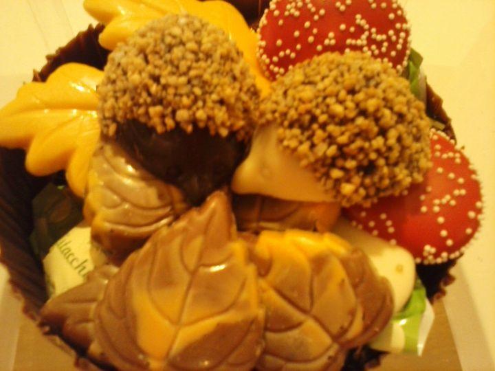 Buiten is het herfst…binnen bij 't Soetendal ook! Wees welkom bij onze chocola…