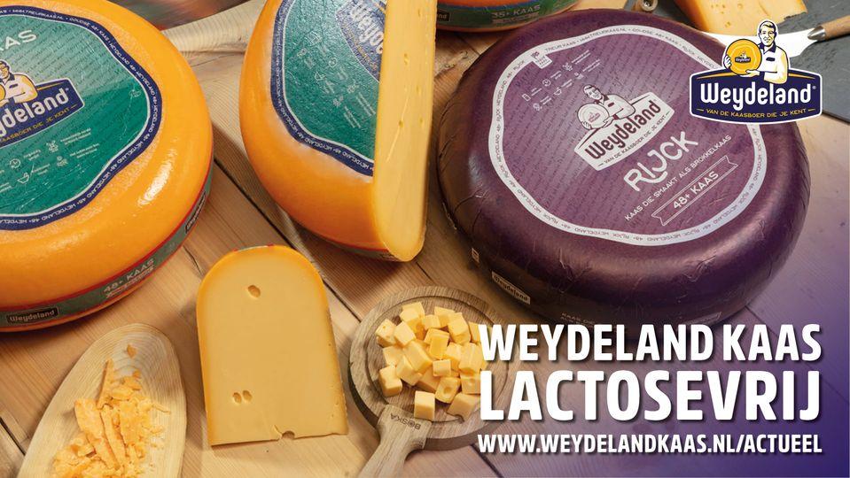 Wist je dat Weydeland Kaas lactosevrij is? Lees er alles over op de website!   …